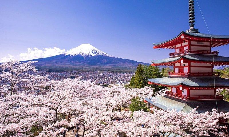 Review kinh nghiệm du lịch Nhật Bản tự túc: đi Nhật cần bao nhiêu tiền